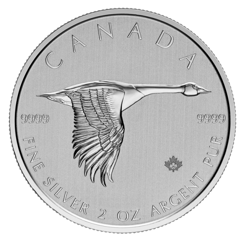 2 Unzen Silber Kanada Gans 2020