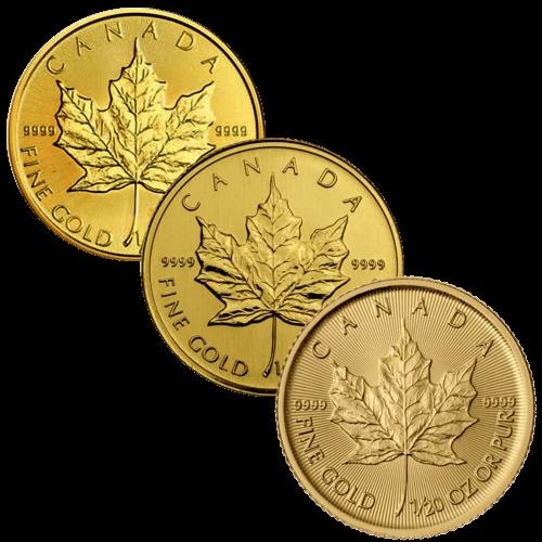 1/20 Unze Goldmünze Maple Leaf | Vorderseite Goldmünze 1/20 Unze Maple Leaf von The Royal Canadian Mint