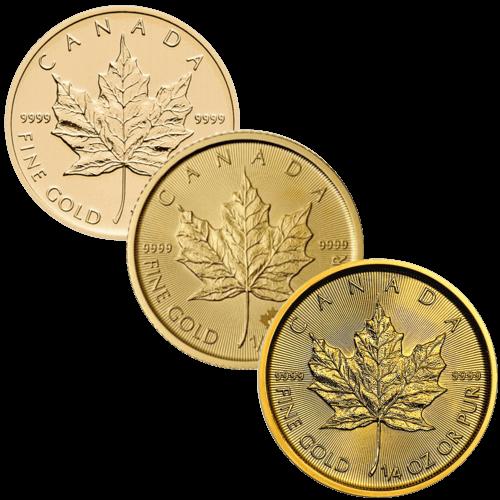 1/4 Unze Goldmünze Maple Leaf   Vorderseite Goldmünze 1/4 Unze Maple Leaf von The Royal Canadian Mint