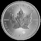 1 Unze Silber Maple Leaf zollfrei