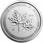 10 Unzen Silber Magnificent Maple Leaf 2019