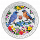 1 Unze Silber Love is Precious Bluebirds 2019 Proof-Qualität
