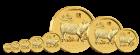 1/20 Unze Gold Lunar II Schwein 2019